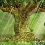 Los árboles celtas como protectores