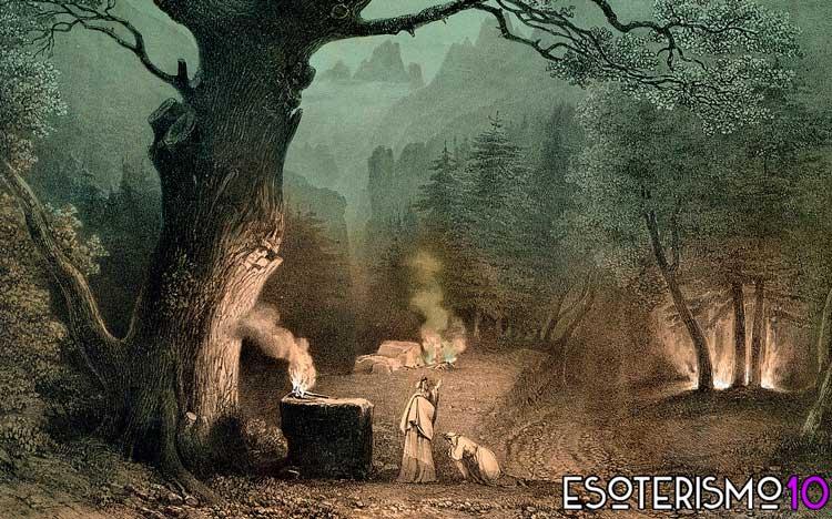 animales en la cultura celta