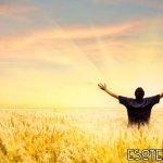 Pasos para crear abundancia